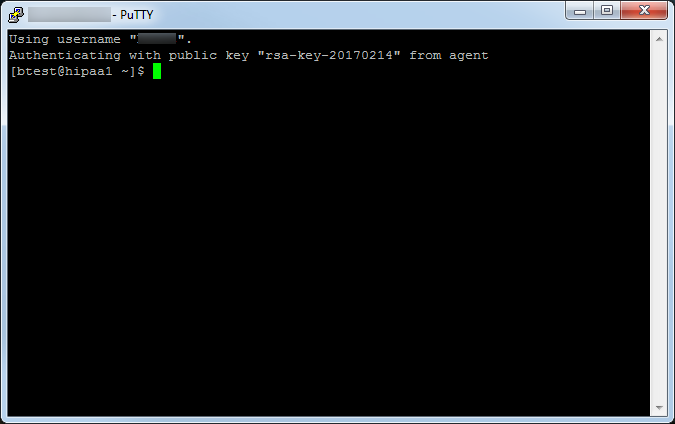 putty-session-with-pageant-ssh-keys